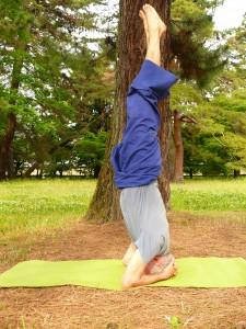 Atelier Yoga en français