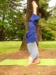 Yoga-printemps-2015-Kyoto-photo-112x150