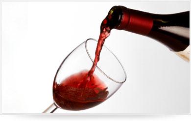 vin - Photo