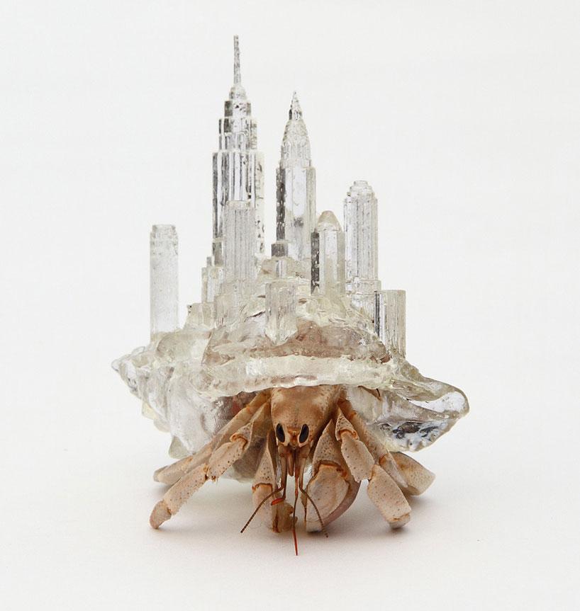 hermit-crab-shells-01-AKI_INOMATA