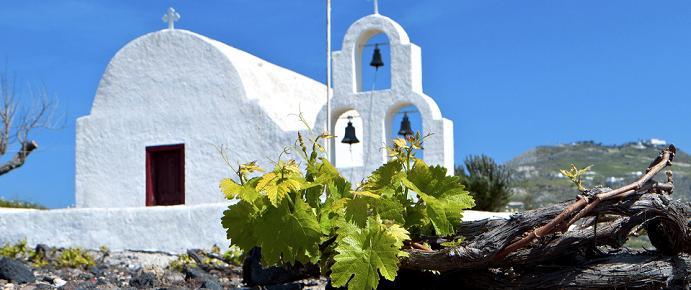 Vins Gréce_image1