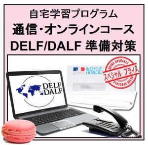 DELF DALF 準備対策