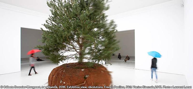 日仏フォーラム「生きものの気配:芸術とロボットの空間」