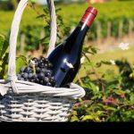 grands-vins-bourgogne