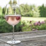 wine tasting_provence_3