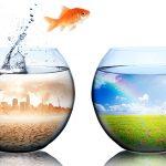 日仏討論会「市民と企業 私たちの選択が未来を変える」