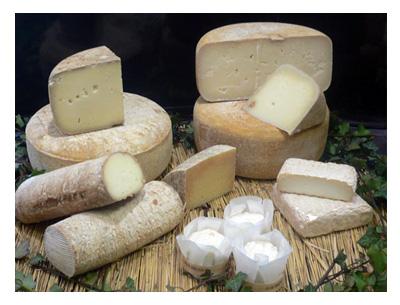 """Résultat de recherche d'images pour """"fromage lait de brebis"""""""