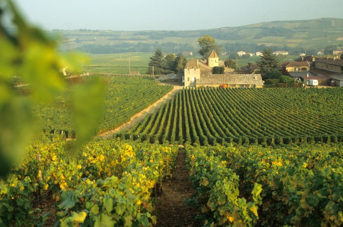 vallon-marcillac-clairvaux-cros-cassagnes-vignes-2011-09-060